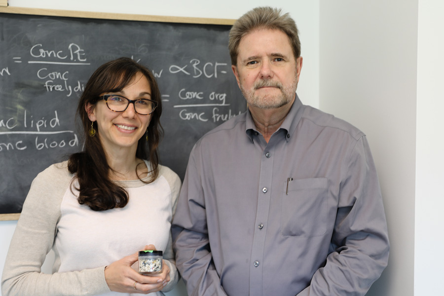 Professors Chelsea Rochman (left, Ecology and Evolutionary Biology) and Bob Andrews (right, CivMin) have joined forces to develop new techniques for analyzing microplastics and nanoplastics in drinking water. (Photo: Tyler Irving)